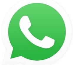 whatsapp mac download