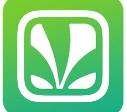 saavn for pc download